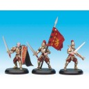 Alahan Guards attachment Box (3)