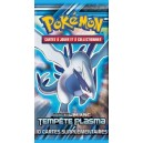 Booster Tempête Plasma - Extension Pokémon N&B